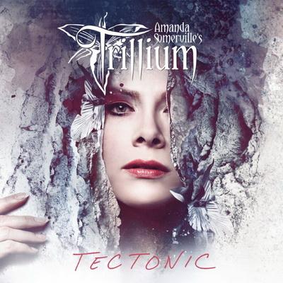 Нов сингъл от TRILLIUM